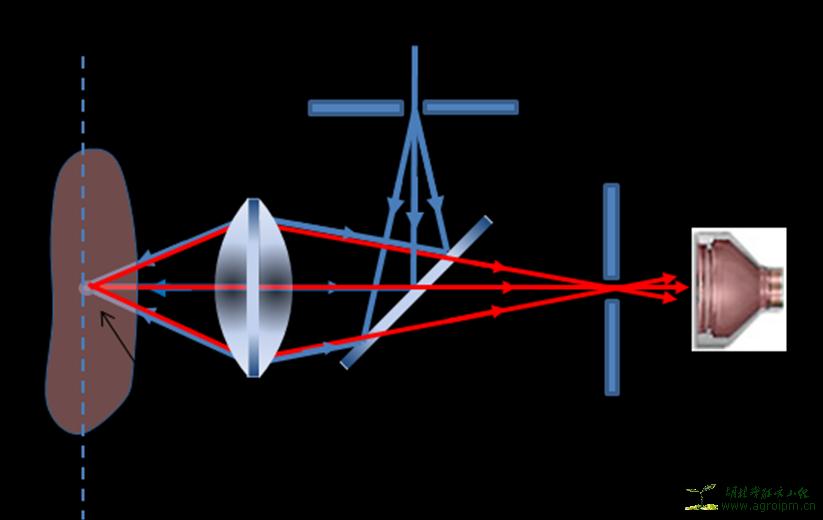 激光共聚焦显微镜原理